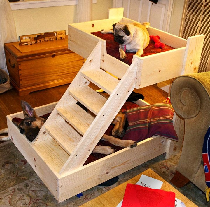 DIY Bunk Beds For Dogs