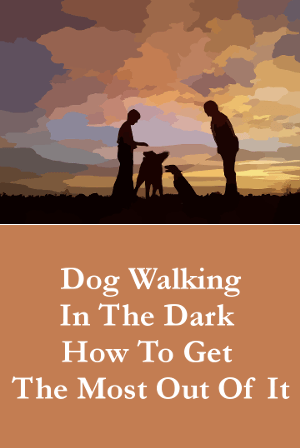 Dog Walking In The Dark - How To Get The Most Out Of It