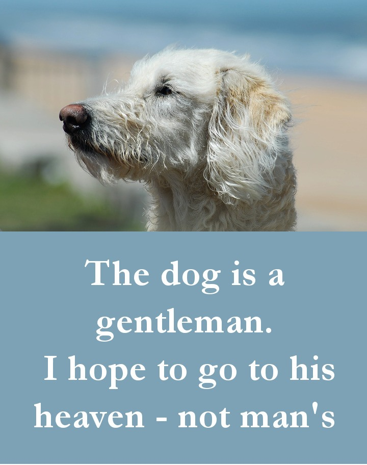 Dog Quotes - The dog is a gentleman. I hope to go to his heaven - not man's
