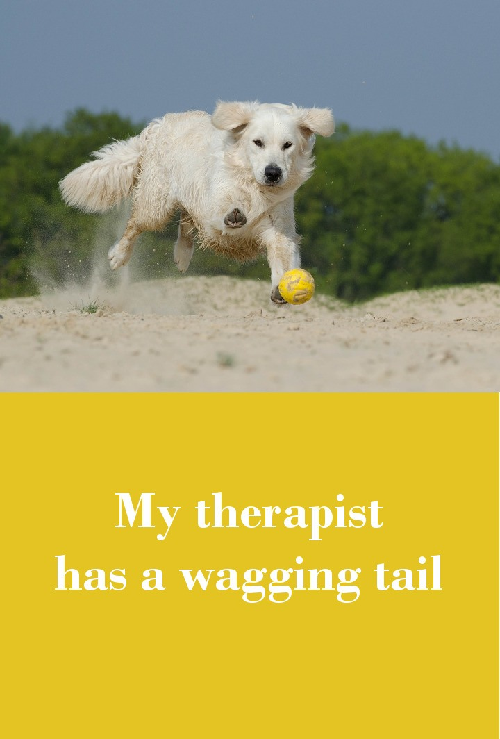 My therapist has a wagging tail