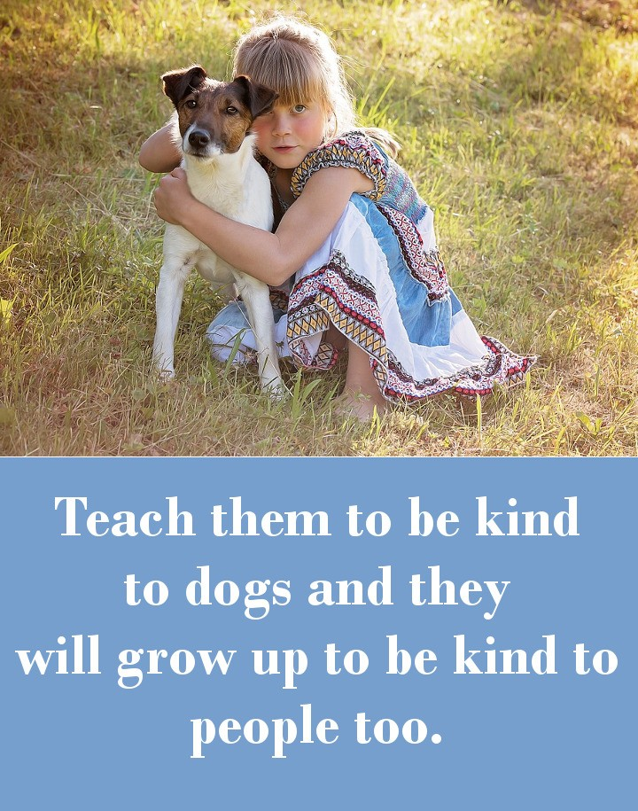 Teach them to be kind to dogs and they will grow up to be kind to people too.
