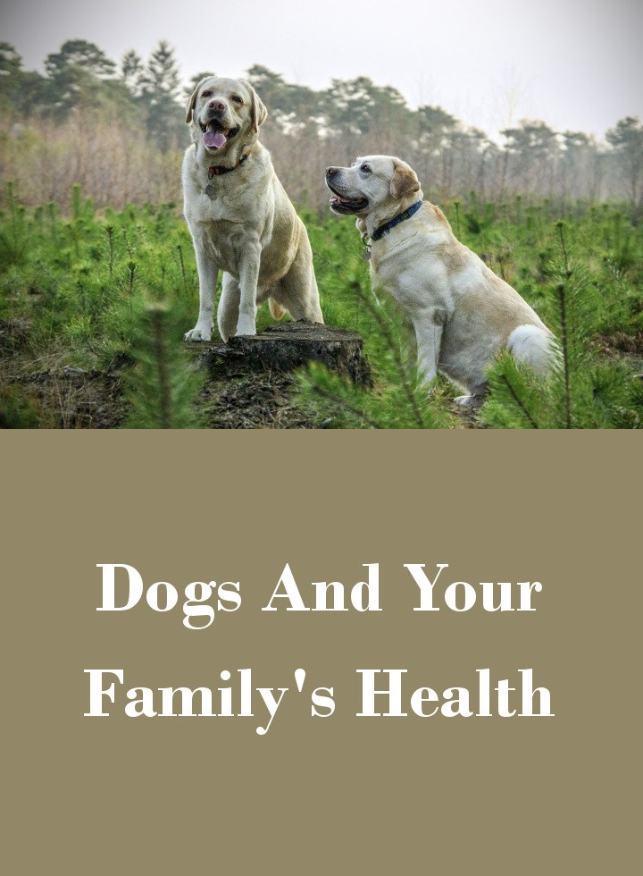 Dogs And Your Family's Health