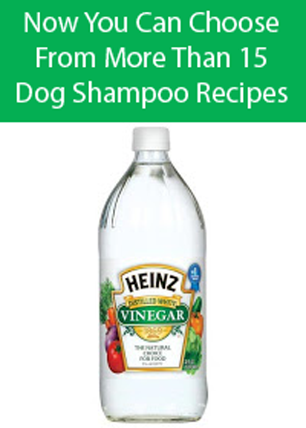 Diy Dog Shampoo With Dish Soap And Vinegar
