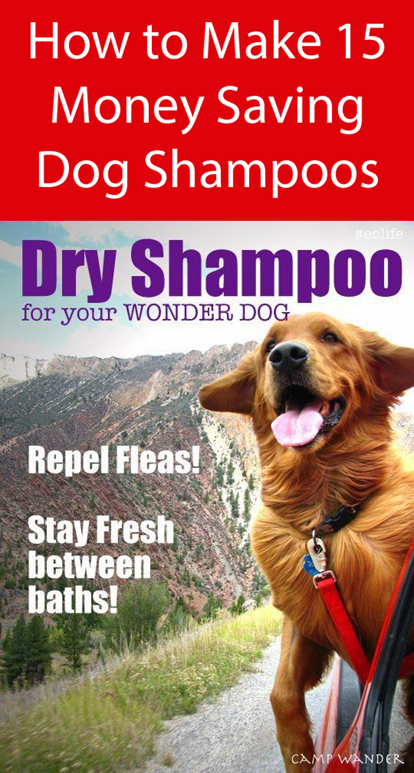 Easy Dry Shampoo For Dogs