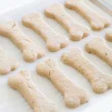 15 Dog Treat Recipes