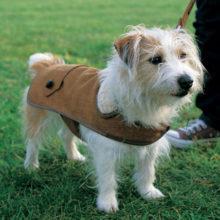 DIY Dog Clothes