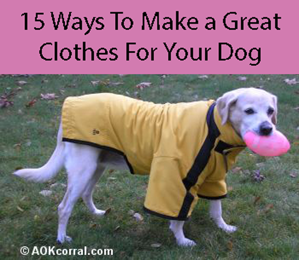 Diy Dog Clothes Save Money And Have The Smartest Dog In Town