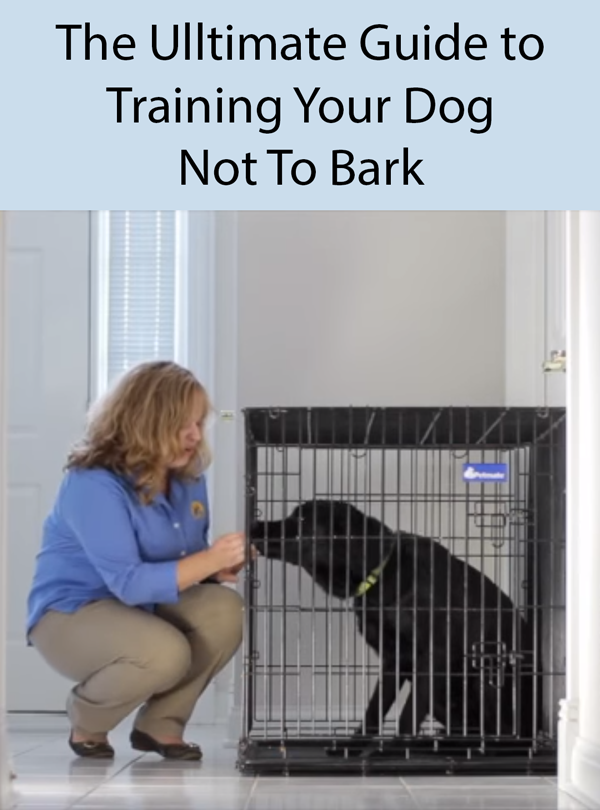 The Ulltimate Guide to Training Your Dog Not To Bark