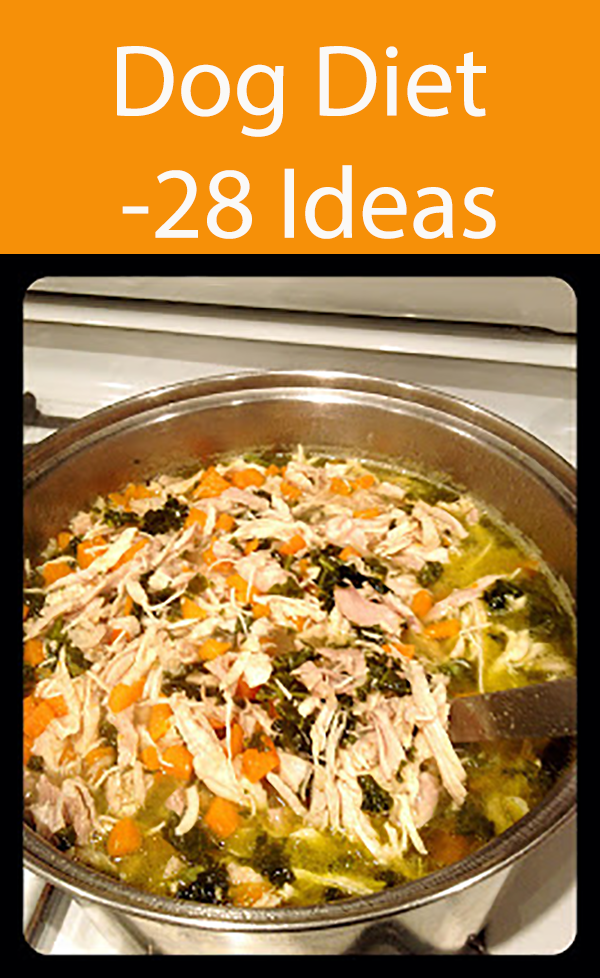 28 Dog Food Recipes Using Natural Healthy Ingredients