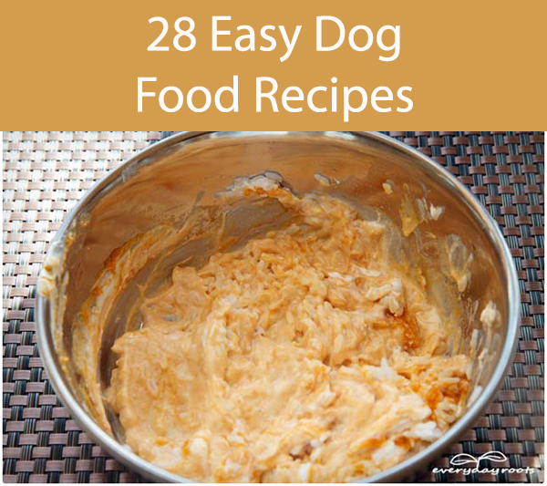 Food For Dogs With Upset Tummy