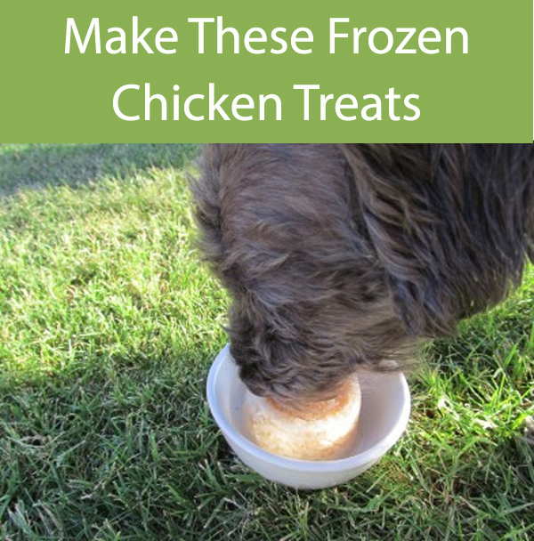Chicken Pops For Dogs