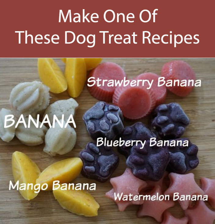 Frozen Fruit Dog Treats
