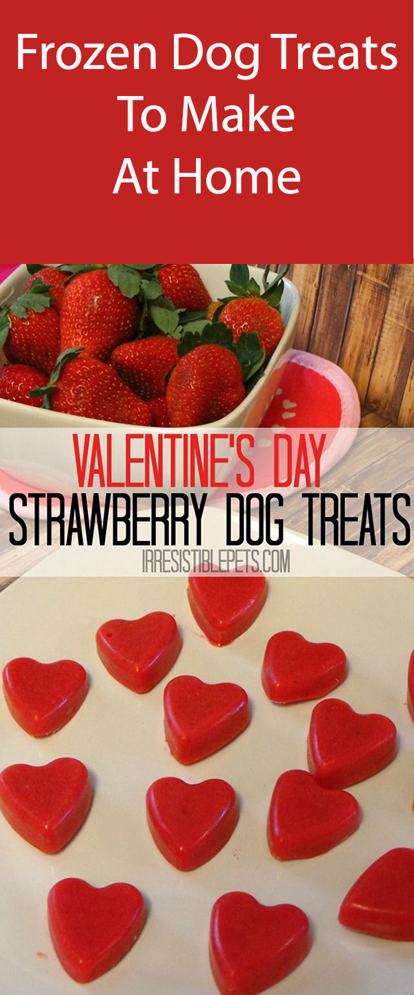 Frozen Strawberry Smoothie Dog Treats