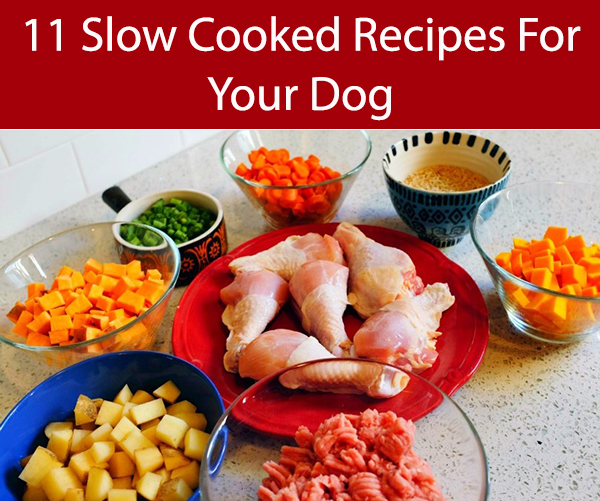 10 slow cooker and crock pot dog food recipes chicken thigh and vegetable dog food forumfinder Gallery