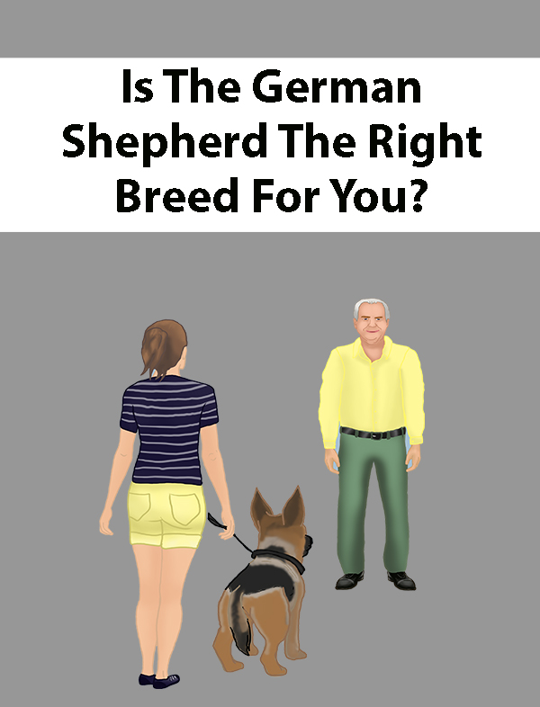 Is The German Shepherd The Right Breed For You