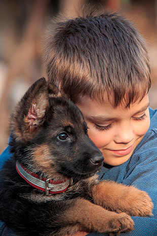Dogs And Children With ADHD