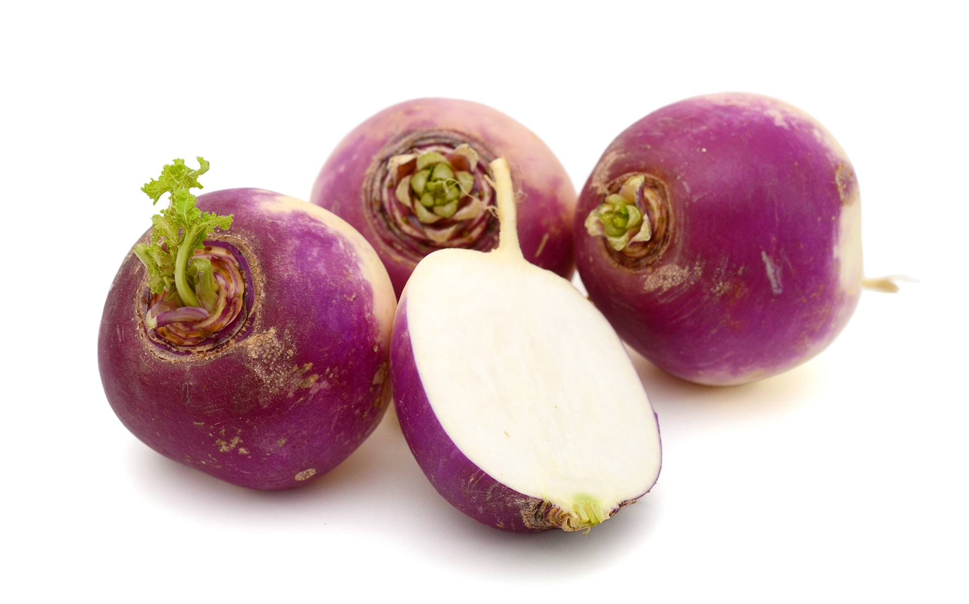 Can Dogs Eat Turnips?